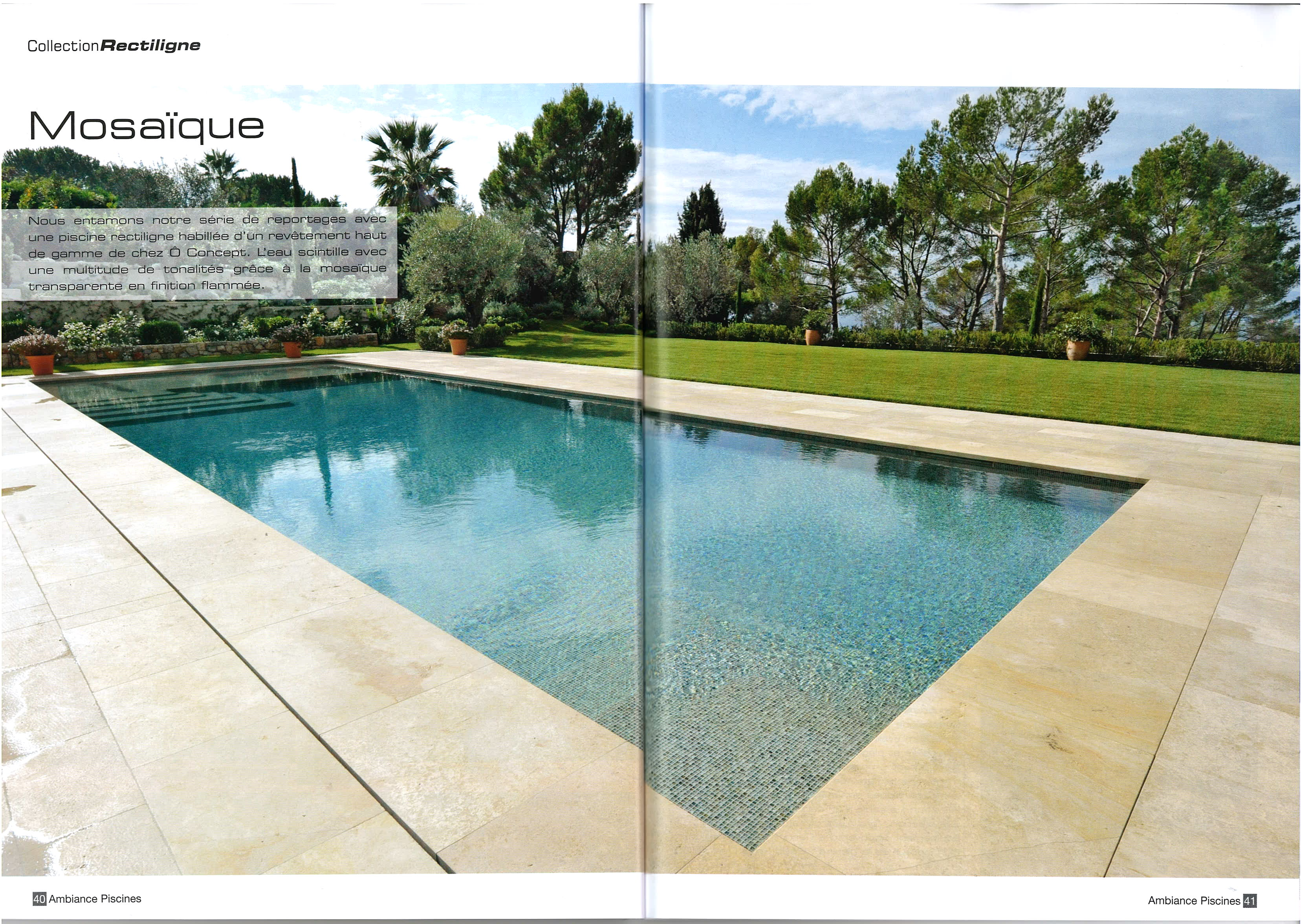 Presse concept for Ambiance piscine